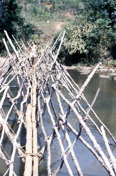 Pont de branches sur la Dargna